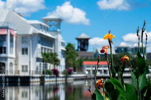 The town of Celebration Florida  - 276952287