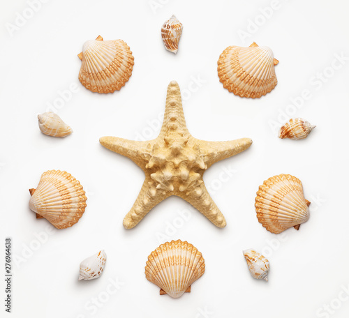 High angle view of seashells and starfish isolated on light grat background Fototapeta