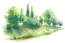 Watercolor Sketch Scene With C...