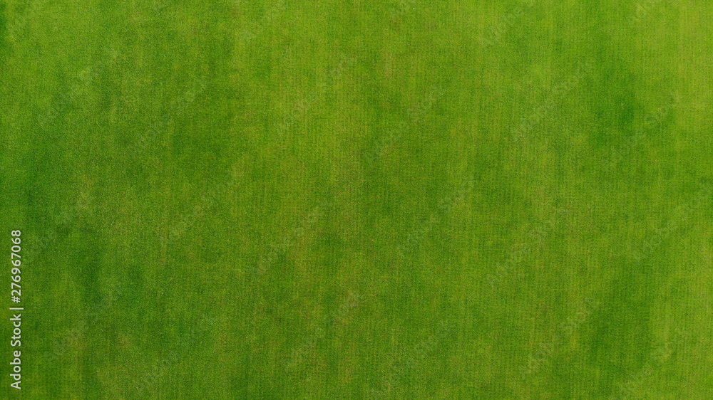 Fototapety, obrazy: Aerial. Green grass texture background. Top view from drone.