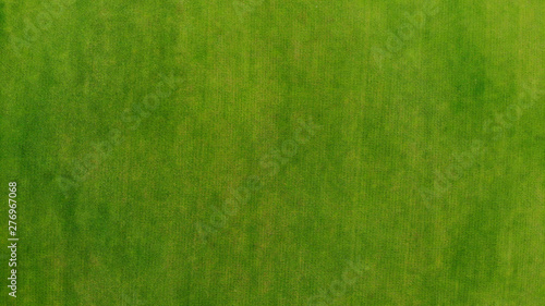 Photo sur Aluminium Herbe Aerial. Green grass texture background. Top view from drone.