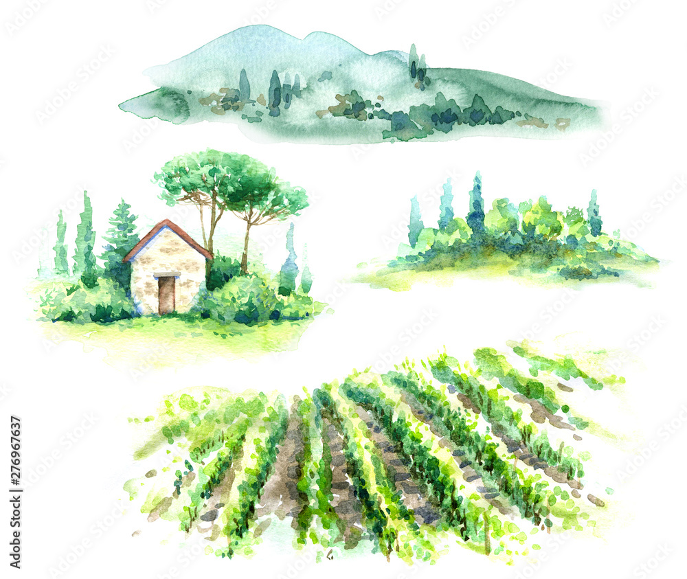 Fototapety, obrazy: Watercolor Fragments of Rural Scene with Hills, Vineyard  and Trees