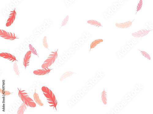 Canvastavla Falling feather elements soft vector design.