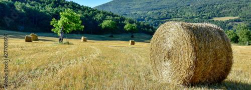 Fotografie, Tablou Balles de paille dans un champ après la moisson