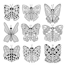 Black And White Butterflies Co...