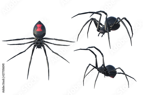 Fotografie, Obraz  Set of 3 Black Widow spiders isolated on white, 3d render.