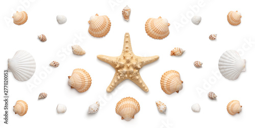 Obraz na plátně High angle, panoramic view of starfish and seashells isolated on white backgroun