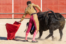 Bull And A Bullfighter In Spain