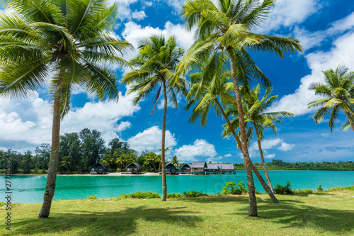 Aluminium Prints Wild West Tropical resort destination in Port Vila, Efate Island, Vanuatu, beach and palm trees