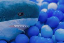 Colorful Balls And Shark Stuff...