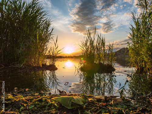 Foto op Aluminium Oranje Sunset at the lake with plants