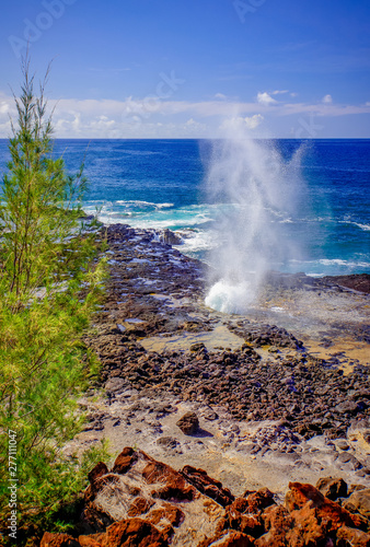 Spray from blowhole Fototapet