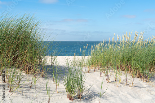 Montage in der Fensternische Nordsee Dune with beach grass.