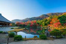 京都 天龍寺の紅葉