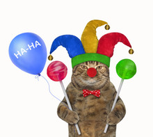 The Cat Clown In A Red Bow Tie...
