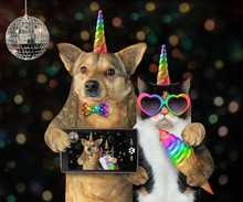 The Dog Unicorn In A Bow Tie With A Smartphone And The Cat Unicorn In Sunglasses With A Colored Ice Cream Cone Made Selfie Together At The Party.