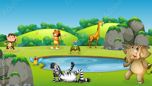 Poster Jeunes enfants Animals around pond scene