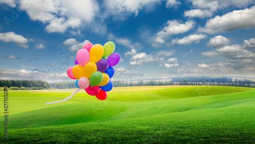 Foto op Plexiglas Groene green field and blue sky