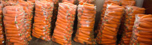 Bags With Young Fresh Carrot P...