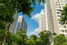 Modern Condominium Building With Green Leaves On Foreground. Green City Concept