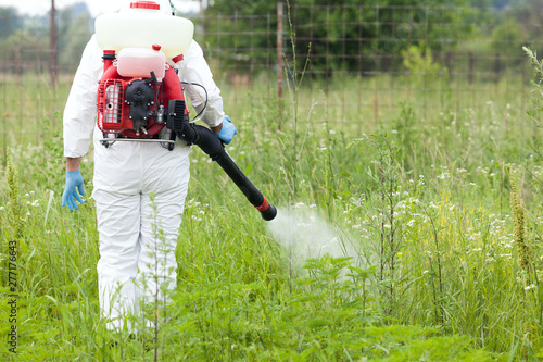 Photographie Man in protective workwear spraying herbicide on ragweed