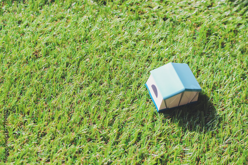 Fotografía  tent on grass miniature 130