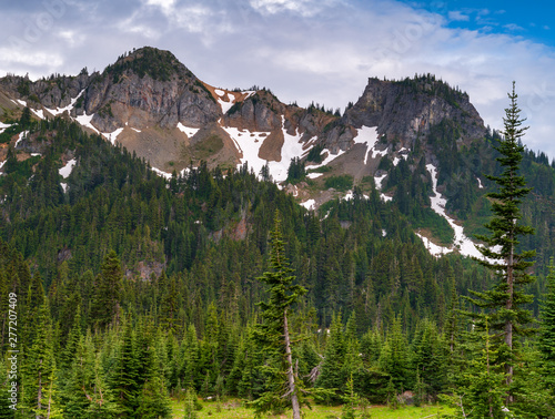 Governors Ridge At Mount Rainier National Park