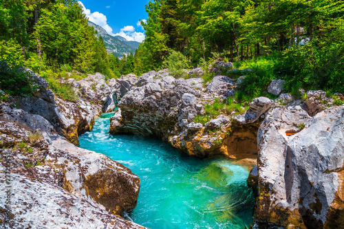 Aluminium Prints Forest river Emerald color Soca river with rocky canyon near Bovec, Slovenia