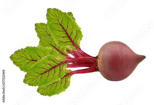 Fototapeta  vegetables beet isolated on white background