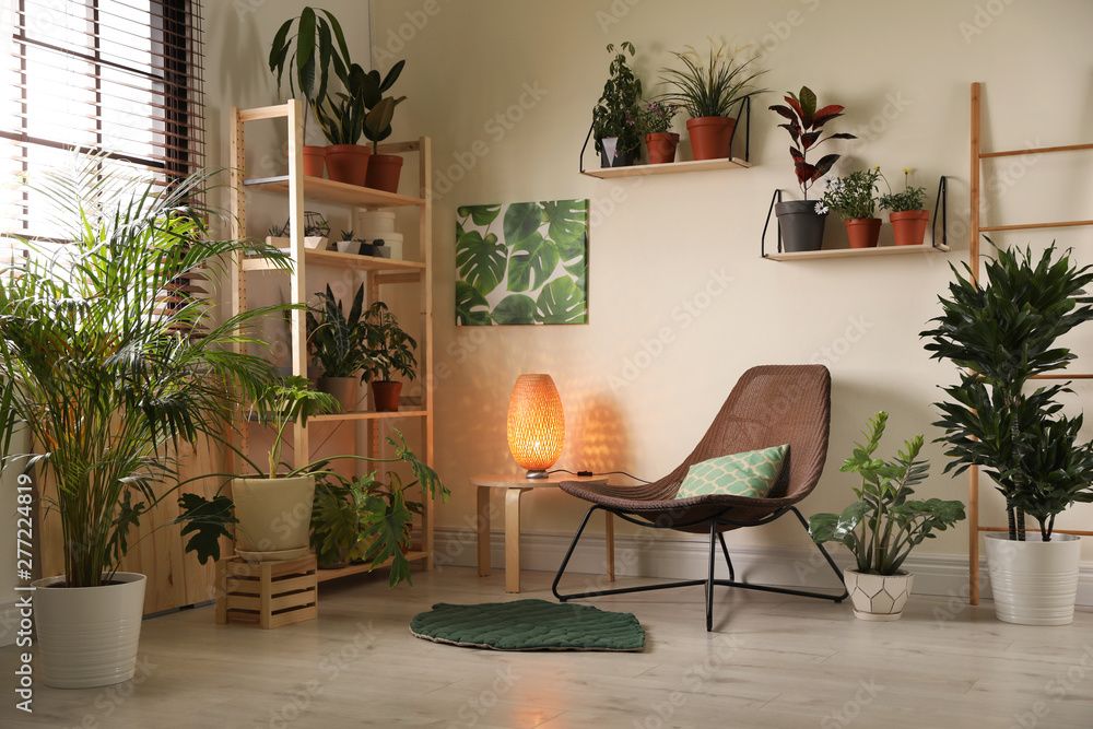 Fototapeta Stylish living room interior with home plants and lounge chair