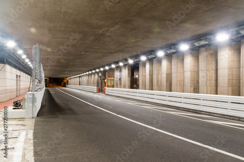 Famous Grand Prix F1 tunnel of Monte-Carlo at Monaco in the night.