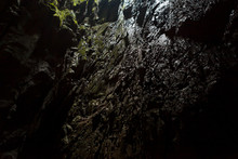 Cave Opening At Gunun Mulu National Park