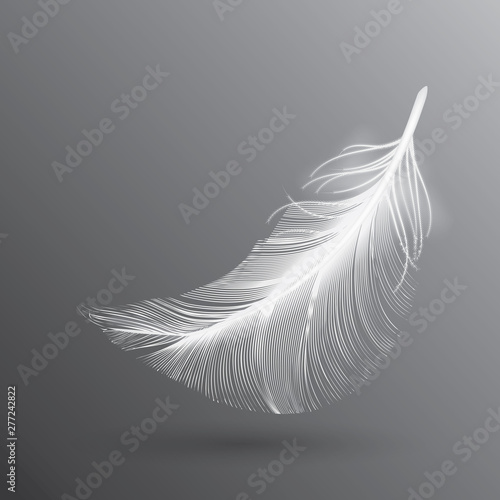 Fotografie, Obraz  White Flying Bird Feather Isolated on Dark Background