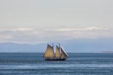 Vintage Style Two Masted Saili...