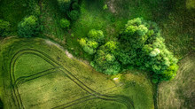 Top-down Greeen Landscape Field With Trees