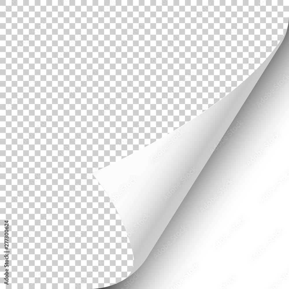 Fototapety, obrazy: Curled page corner with shadow on transparent background. Blank sheet of paper. Vector illustration.