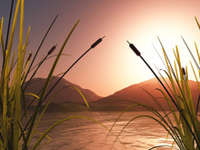 3D Landscape With Reeds Against Sunset Mountains