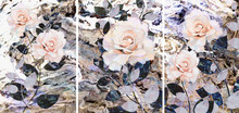 Collection Of Designer Oil Paintings. Decoration For The Interior. Modern Abstract Art On Canvas. Set Of Patterns With Different Textures And Colors. Roses.