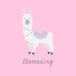Hand drawn white llama with patterned fringed blanket. Cute furry llama or alpaca animal vector illustration with writing llamazing. Isolated on pink background.