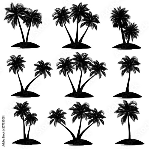 Set of palm tree silhouettes (coconut, date, acai), vector illustrations. Wall mural
