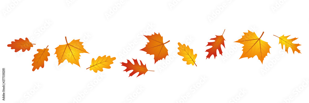 Fototapety, obrazy: set of autumn leaves in the wind on white background vector illustration EPS10
