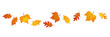 set of autumn leaves in the wind on white background vector illustration EPS10