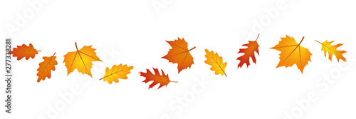 Fototapeta set of autumn leaves in the wind on white background vector illustration EPS10 obraz