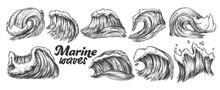 Designed Sketch Splash Marine Wave Set Vector. Collection Of Different Enormous Huge Breaking Ocean Sea Storm Water Wave With Foam. Nature Aquatic Tsunami Monochrome Cartoon Illustration
