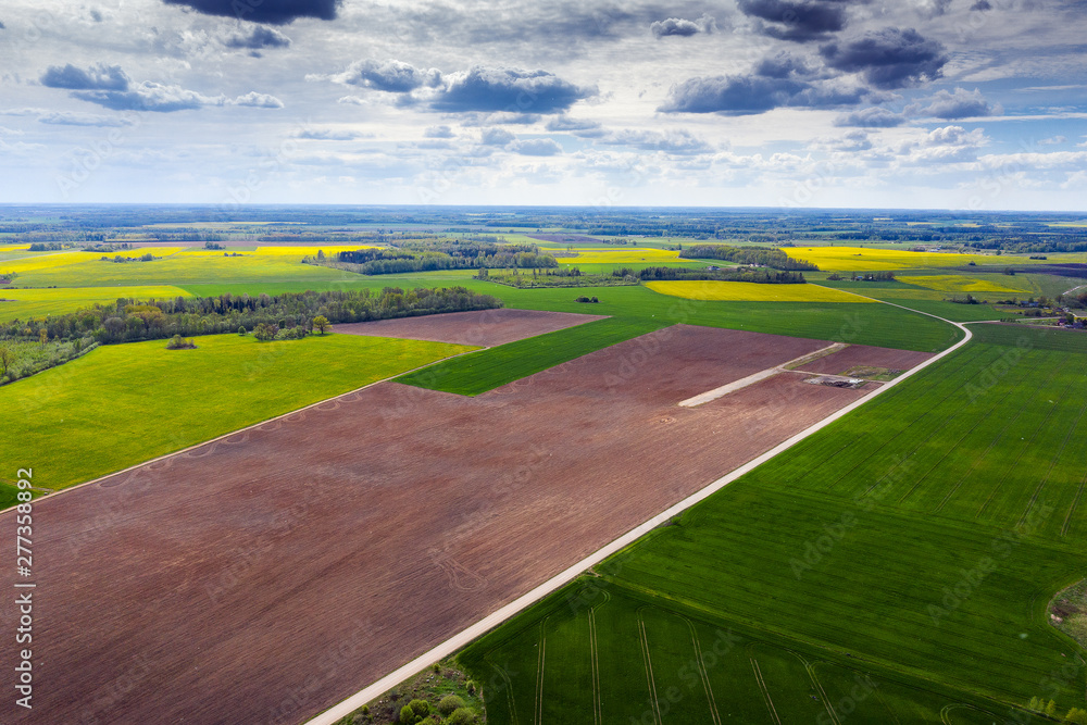 Fototapety, obrazy: Brown and fresh agricultural fields in spring time.