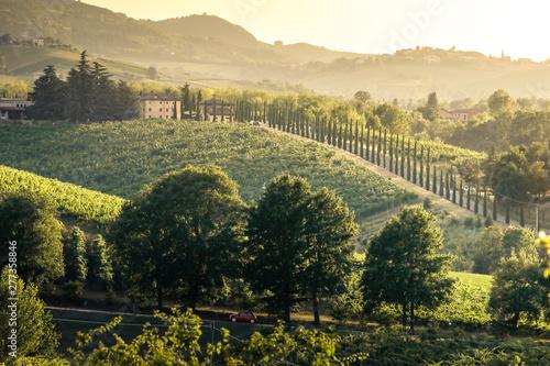 Foto auf Gartenposter Schwarz Castelvetro di Modena hills at sunset. Castelvetro, Modena province, Emilia Romagna, Italy