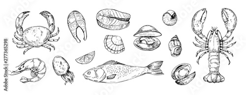 Foto Set of seafood objects