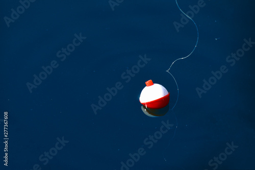 Fotografie, Obraz red and white floating fishing bobber with white fish line on dark blue water