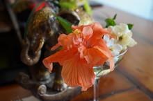 Hibiscus Flower Arrangement On...