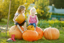 Two Little Sisters Sitting On Huge Pumpkins On A Pumpkin Patch. Kids Picking Pumpkins At Country Farm On Warm Autumn Day.